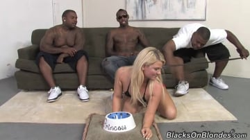 Casey Cumz - Blacks On Blondes