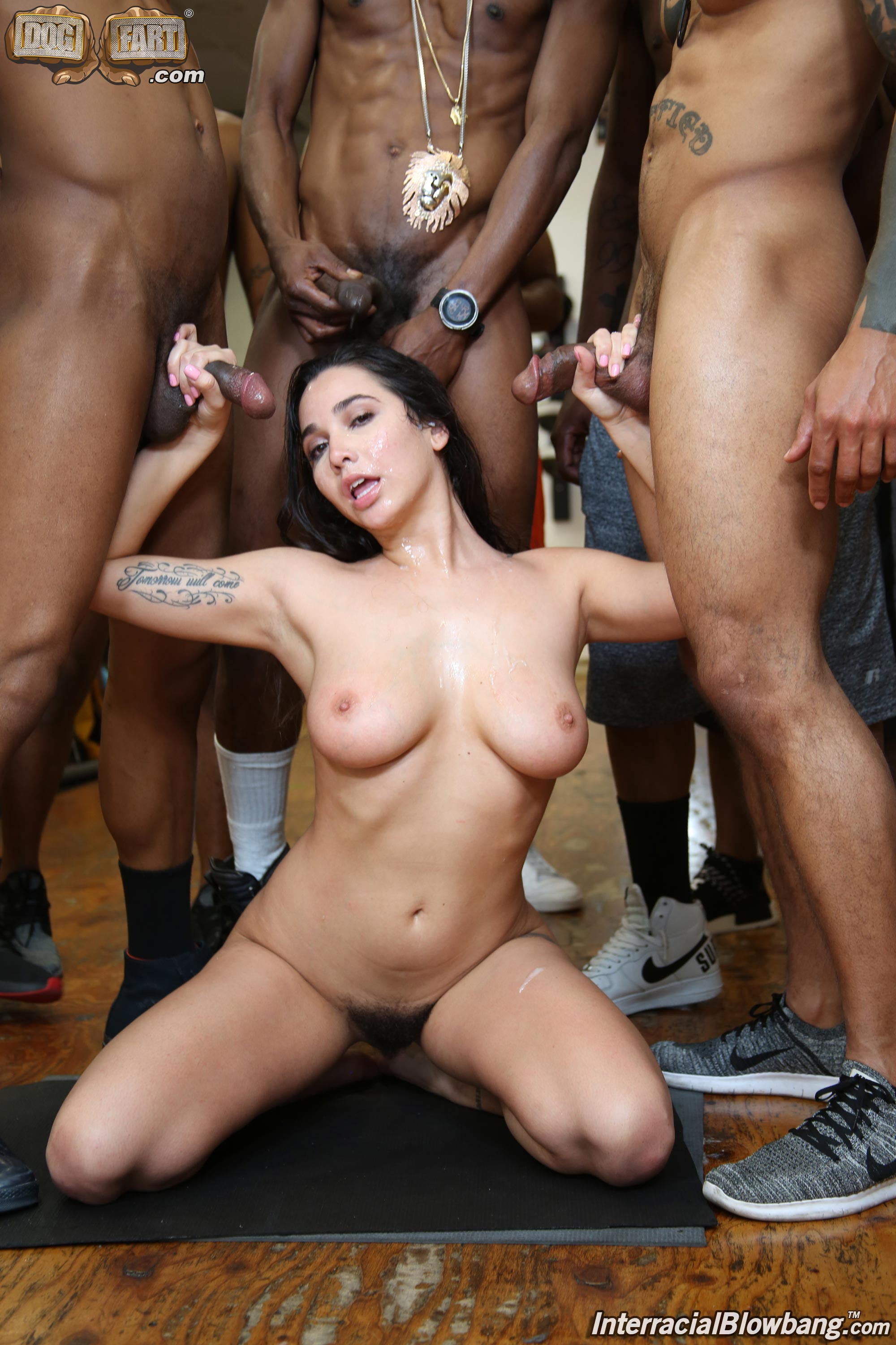 Dogfart 'Karlee Grey - Interracial Blowbang' starring Karlee Grey (photo 25)