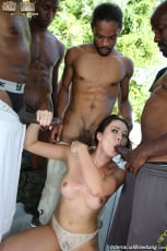 Melissa Moore - Interracial Blowbang (Thumb 12)