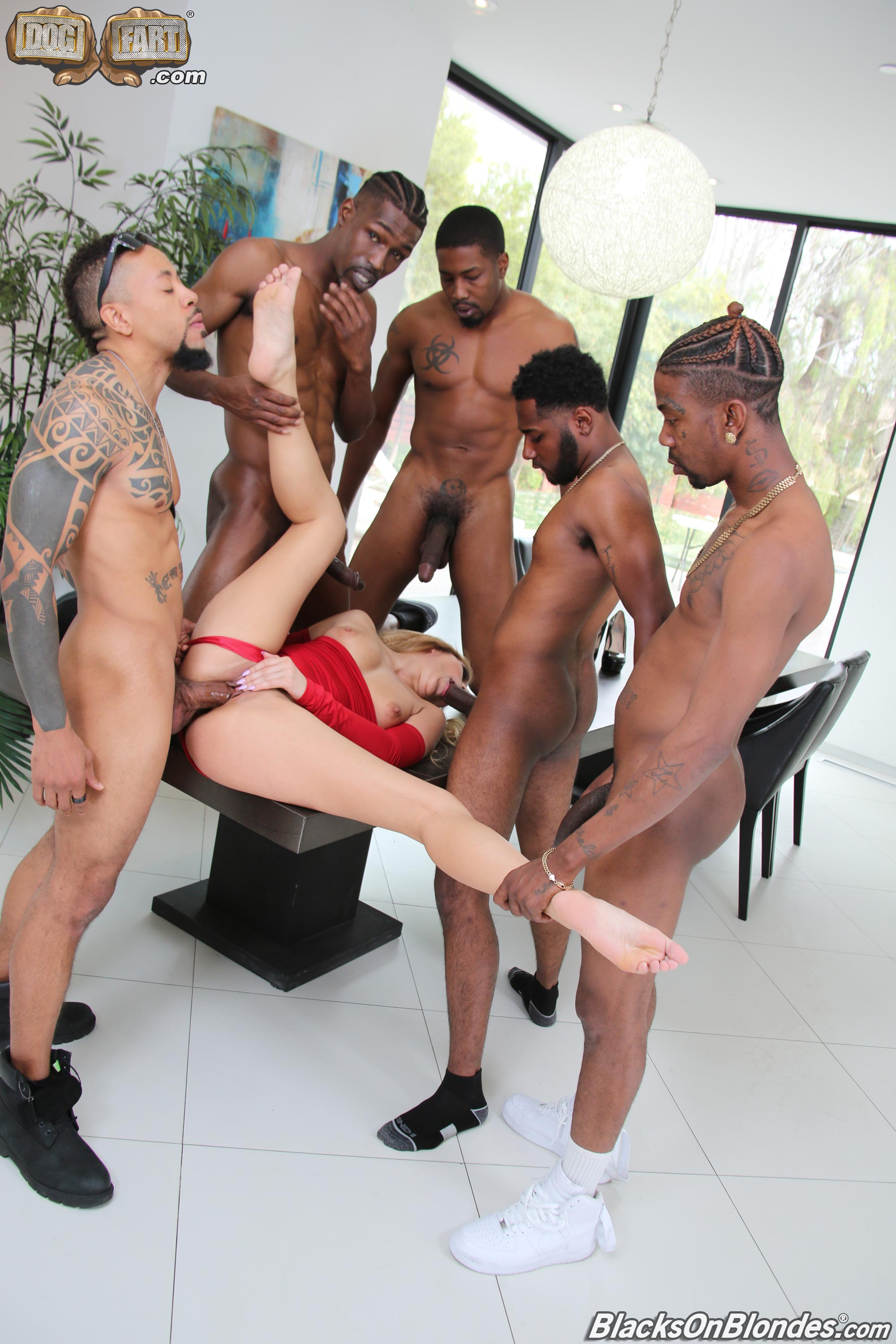 Dogfart 'Moka Mora - Blacks On Blondes' starring Moka Mora (photo 14)