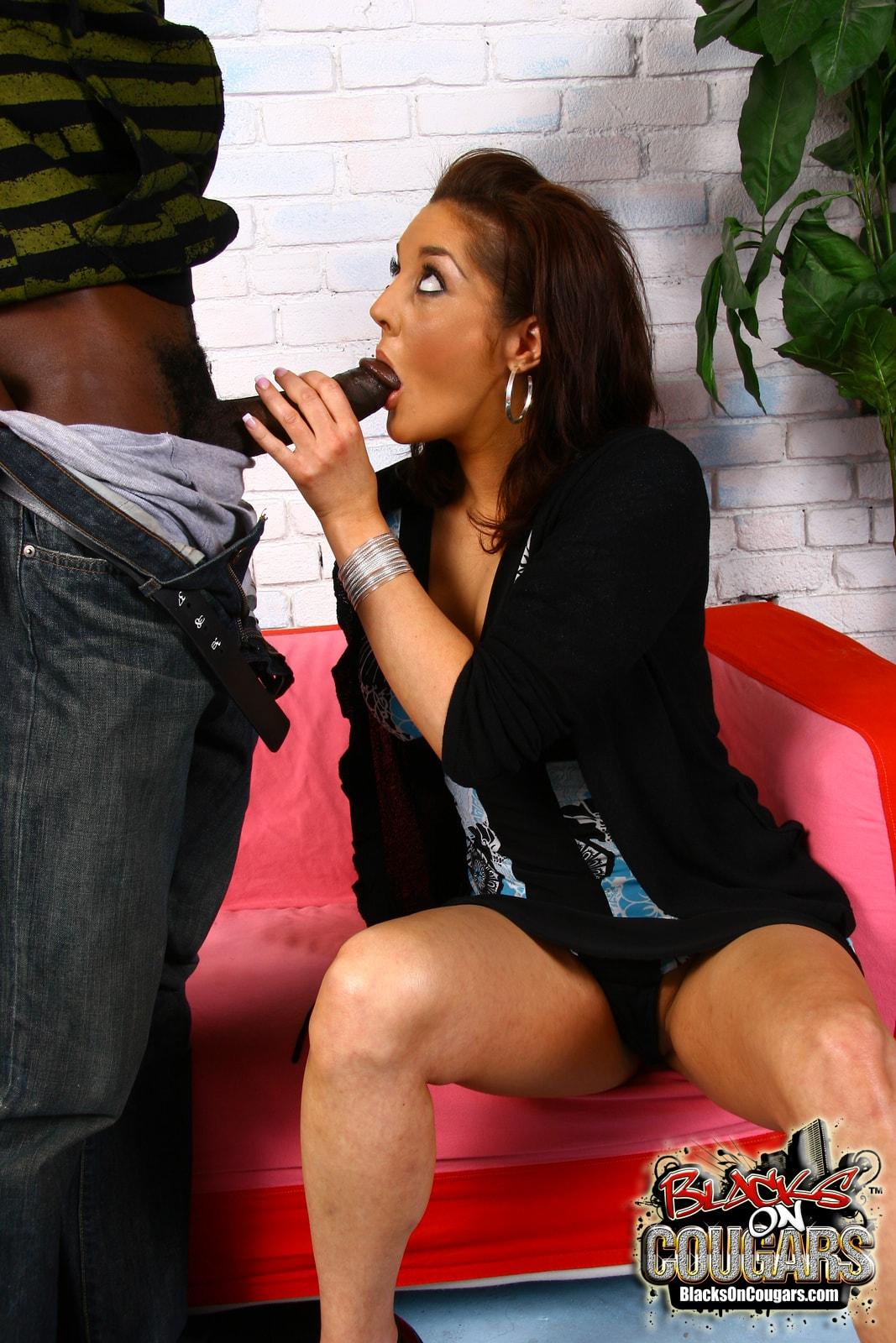 Dogfart '- Blacks On Cougars' starring Bobbi Lennox (Photo 14)