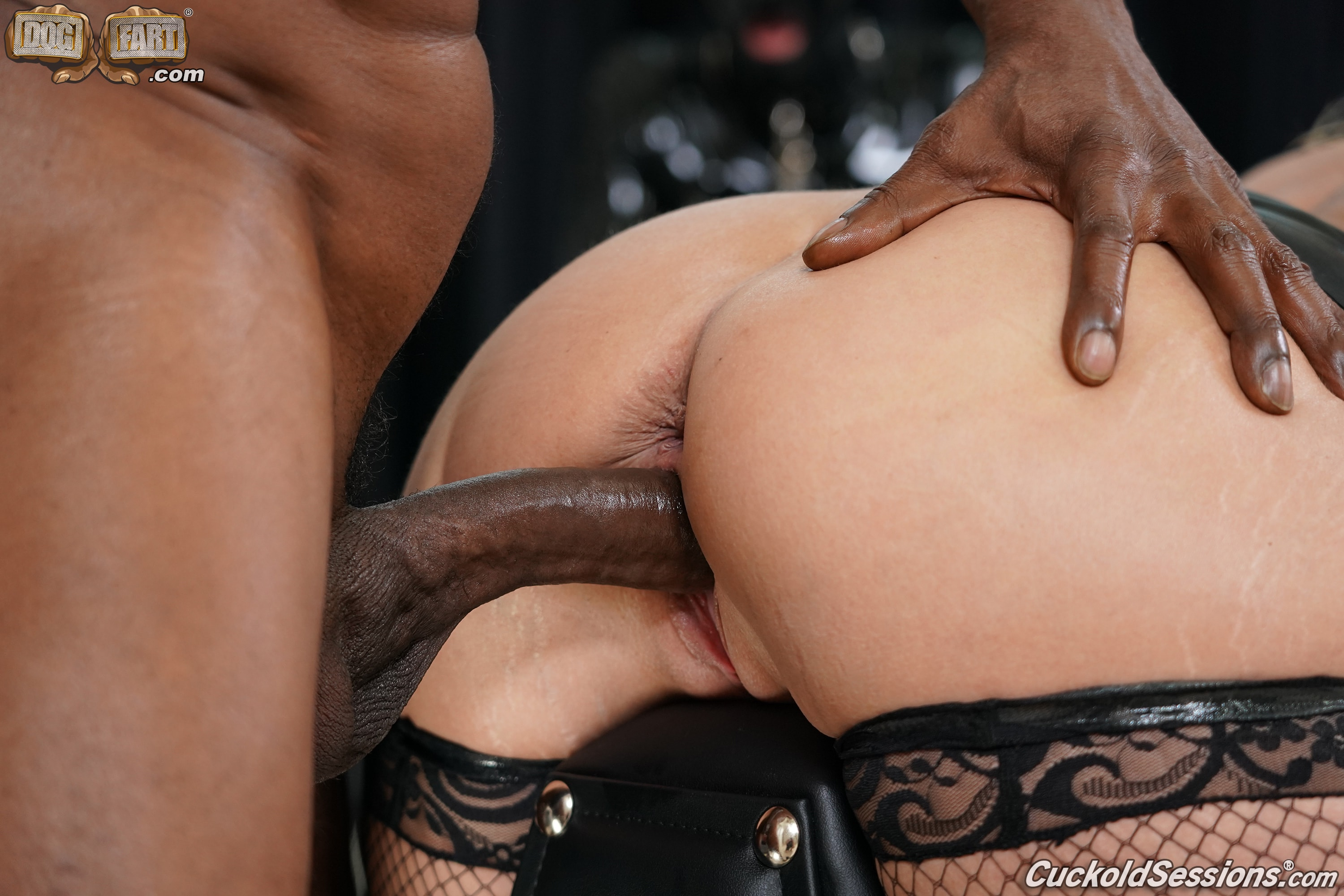 Dogfart '- Cuckold Sessions - Scene 4' starring Brooklyn Chase (Photo 21)