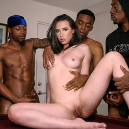 Casey Calvert in 'Dogfart' - Blacks On Blondes - Scene 3 (Thumbnail 6)