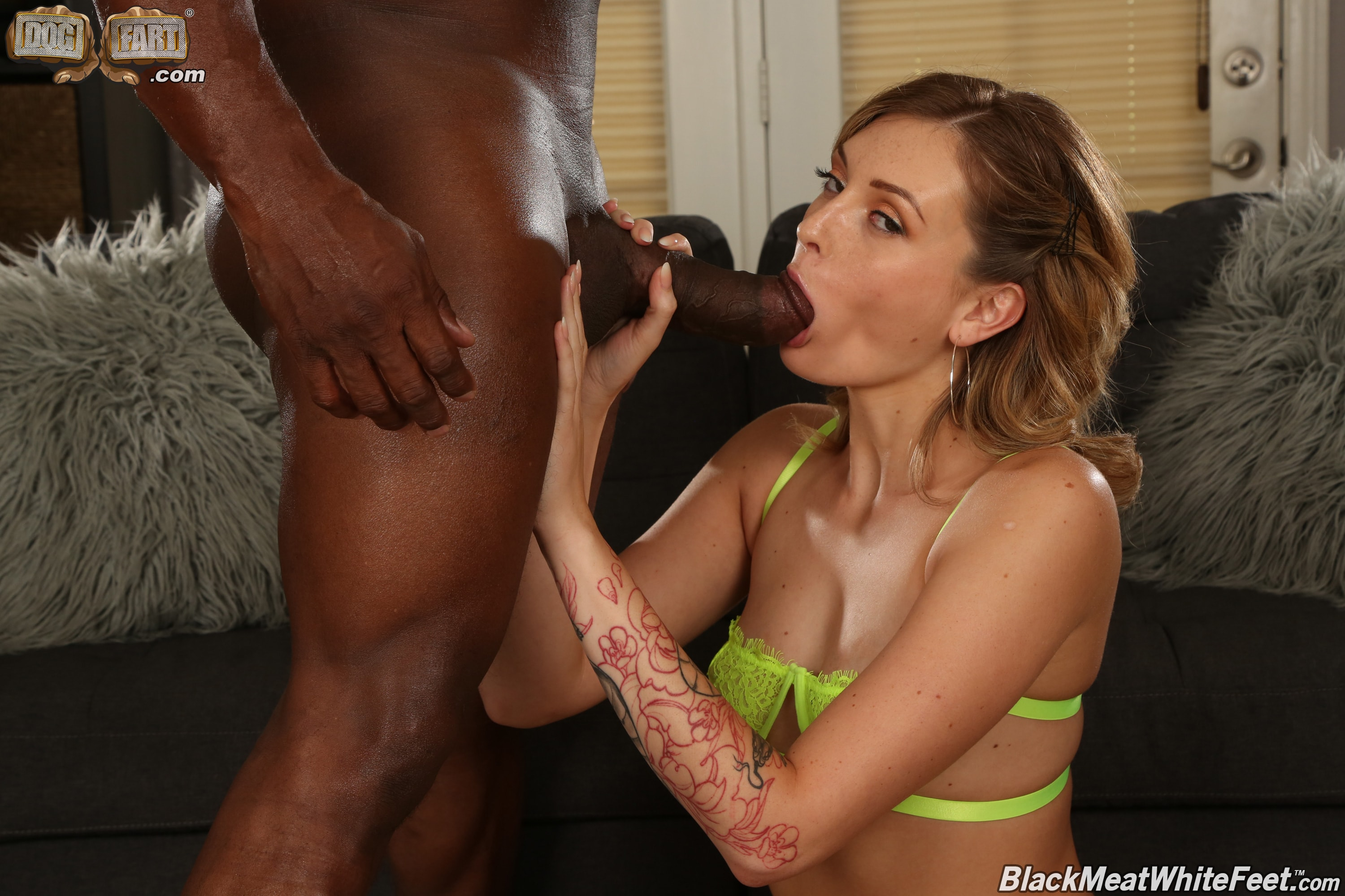 Dogfart '- Black Meat White Feet' starring Charlotte Sins (Photo 8)