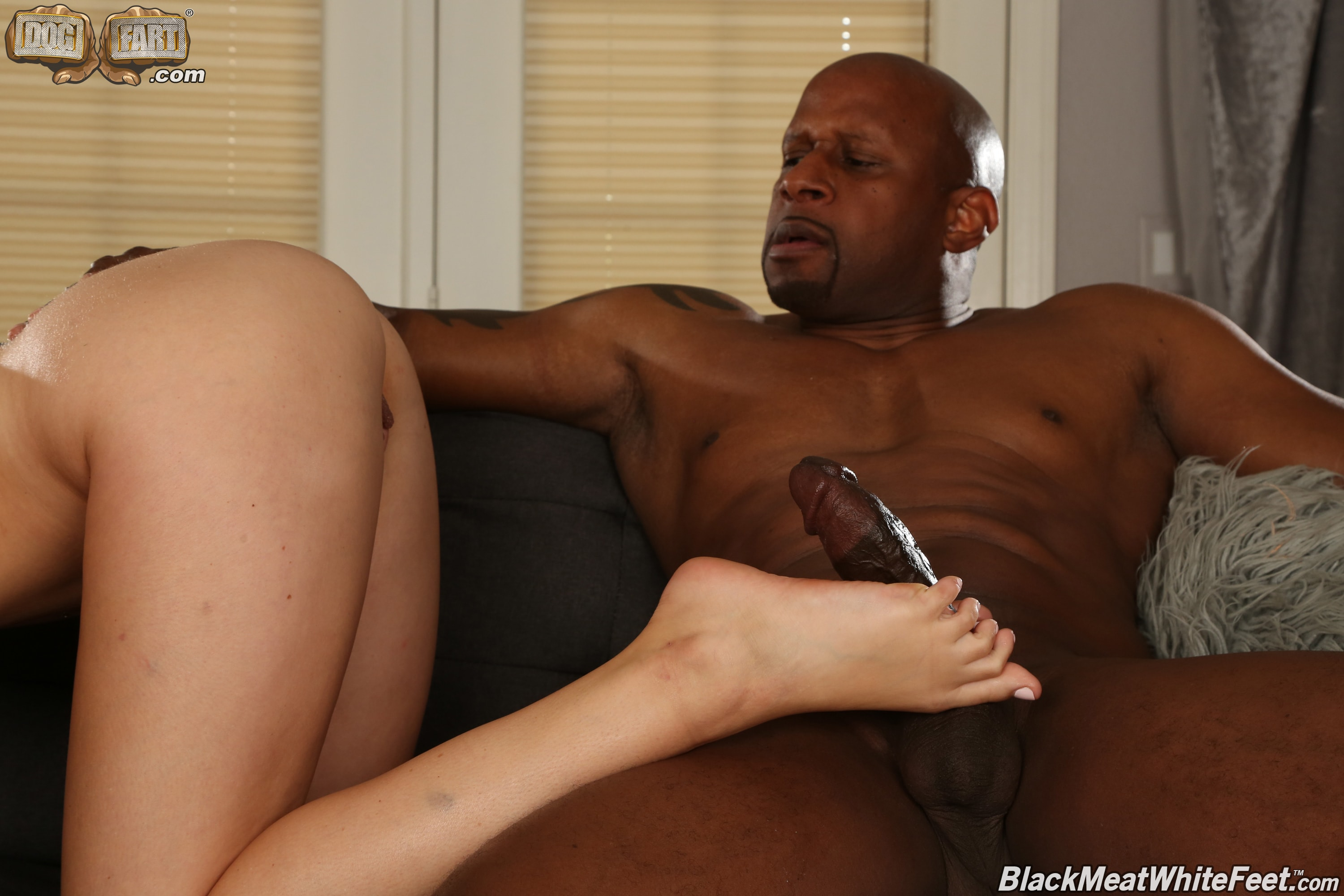 Dogfart '- Black Meat White Feet' starring Charlotte Sins (Photo 20)