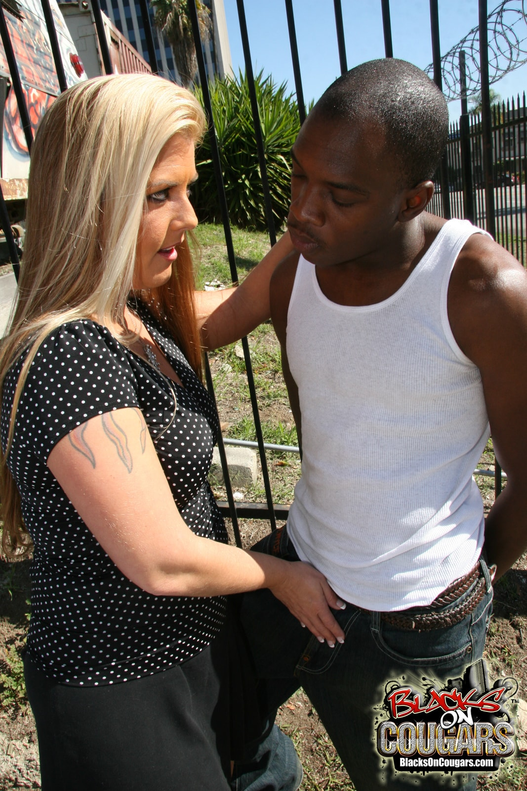 Dogfart '- Blacks On Cougars' starring Joclyn Stone (Photo 3)