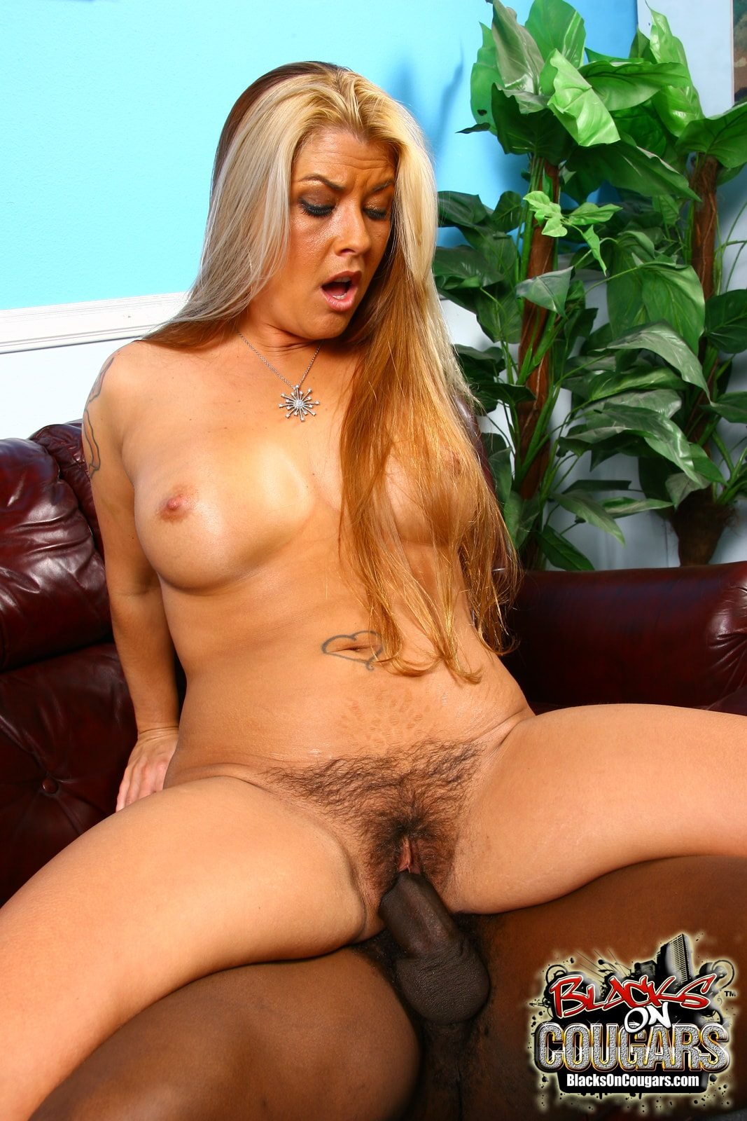 Dogfart '- Blacks On Cougars' starring Joclyn Stone (Photo 27)