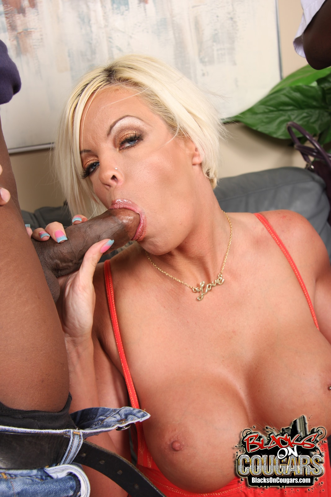 Dogfart '- Blacks On Cougars' starring Jordan Blue (Photo 16)