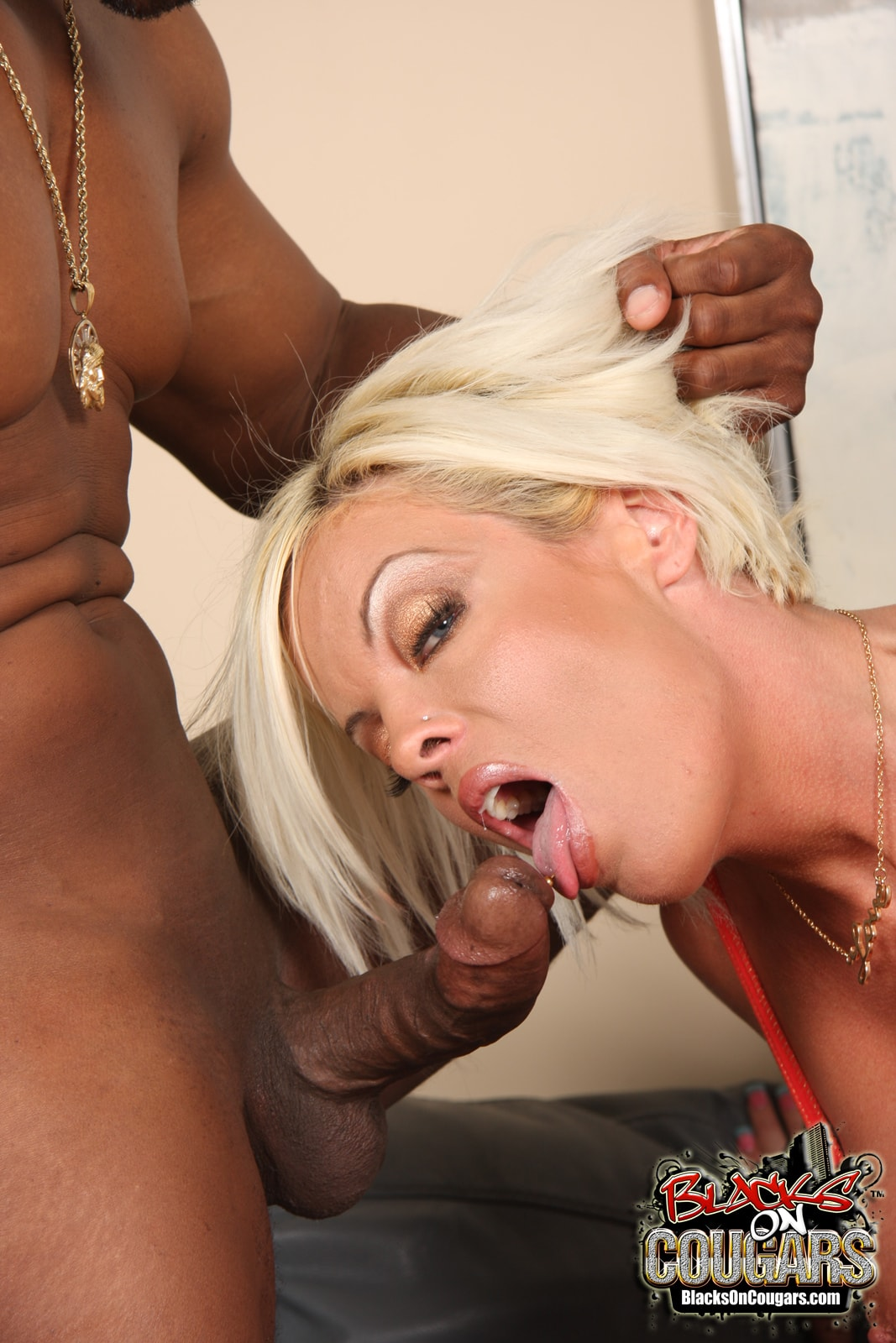 Dogfart '- Blacks On Cougars' starring Jordan Blue (Photo 24)