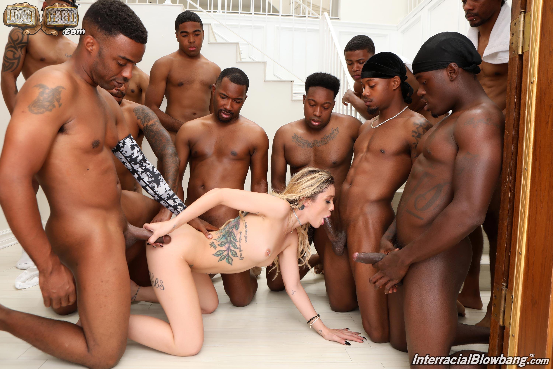 Dogfart '- Interracial Blowbang' starring Kali Roses (Photo 13)