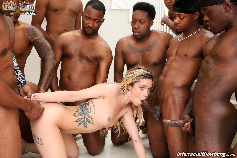 Dogfart '- Interracial Blowbang' starring Kali Roses (Photo 14)