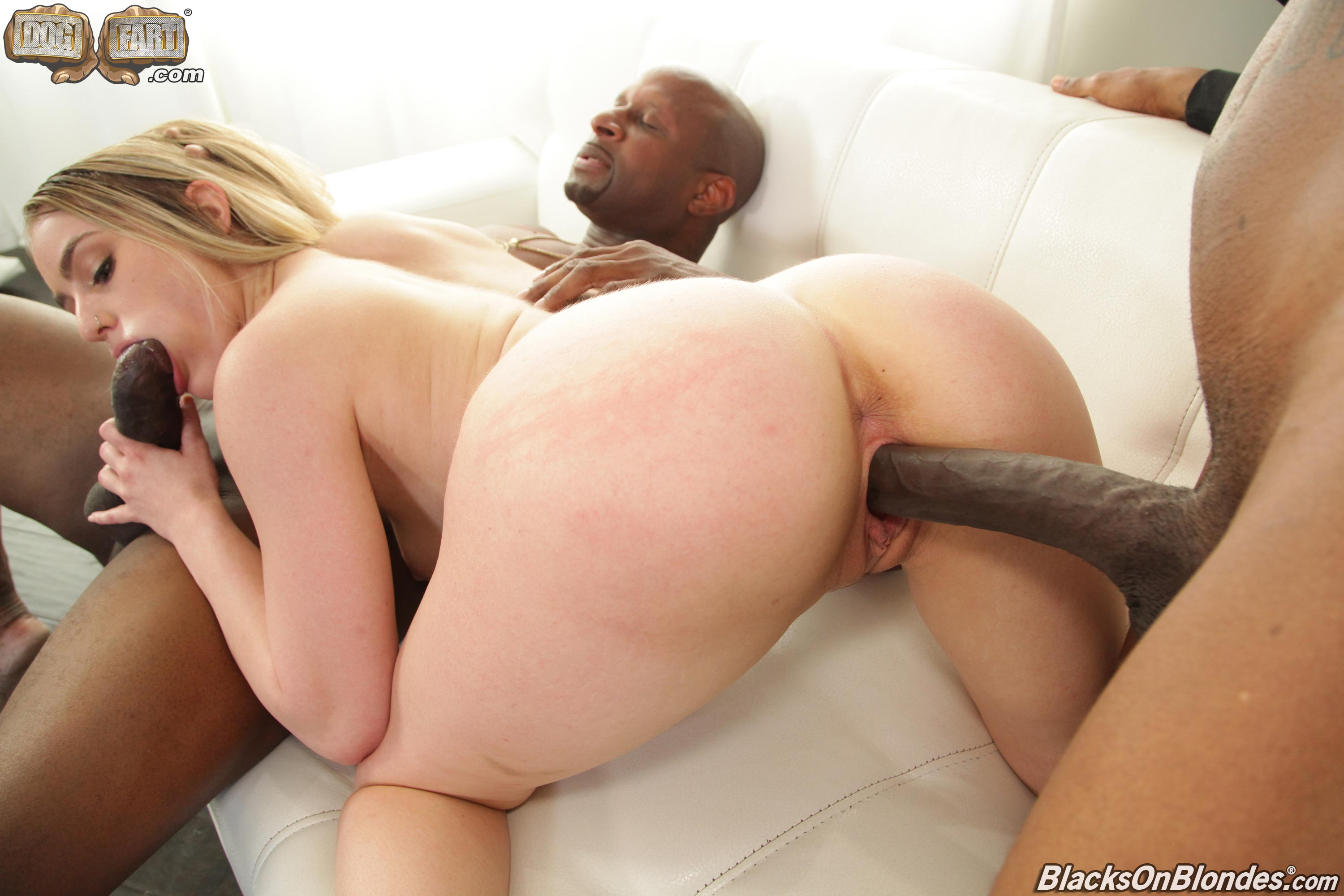 Dogfart '- Blacks On Blondes' starring Kenzie Madison (Photo 16)