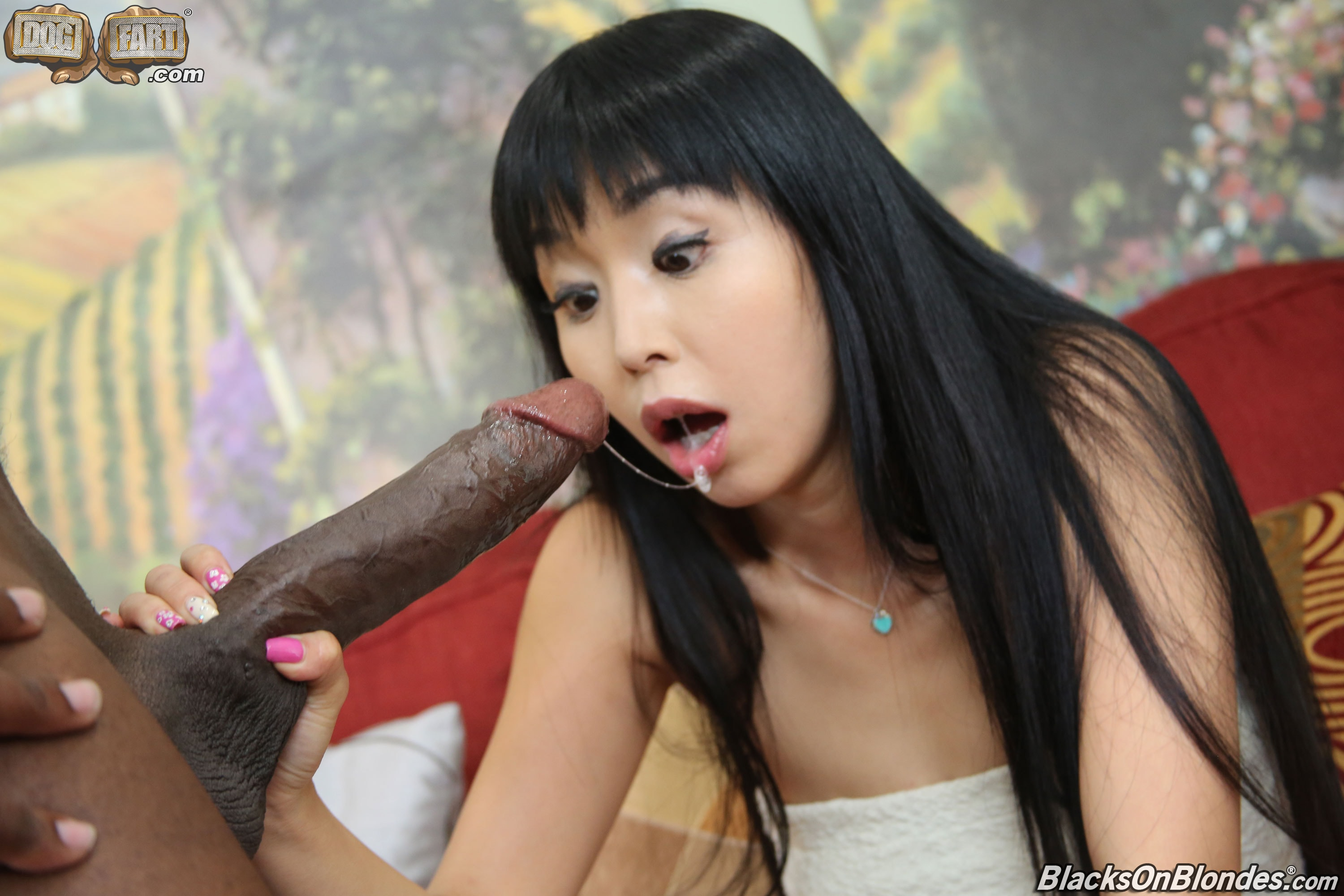 thai-chicks-black-dicks
