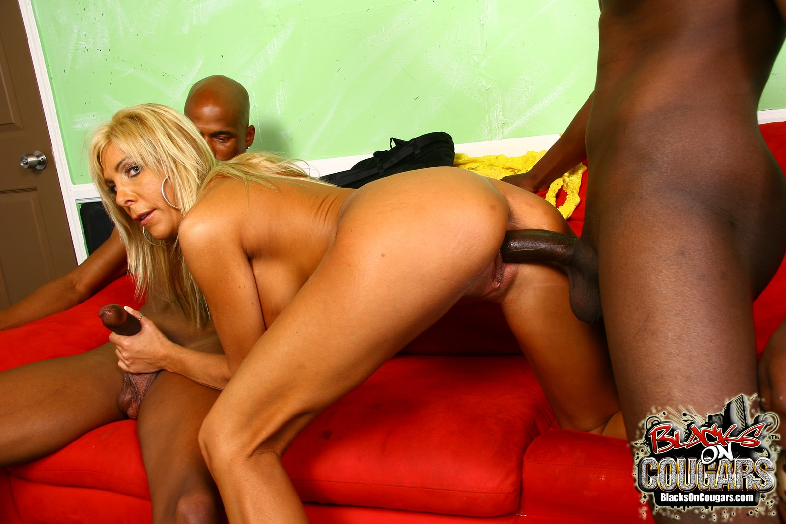 Dogfart '- Blacks On Cougars' starring Misty Vonage (Photo 21)