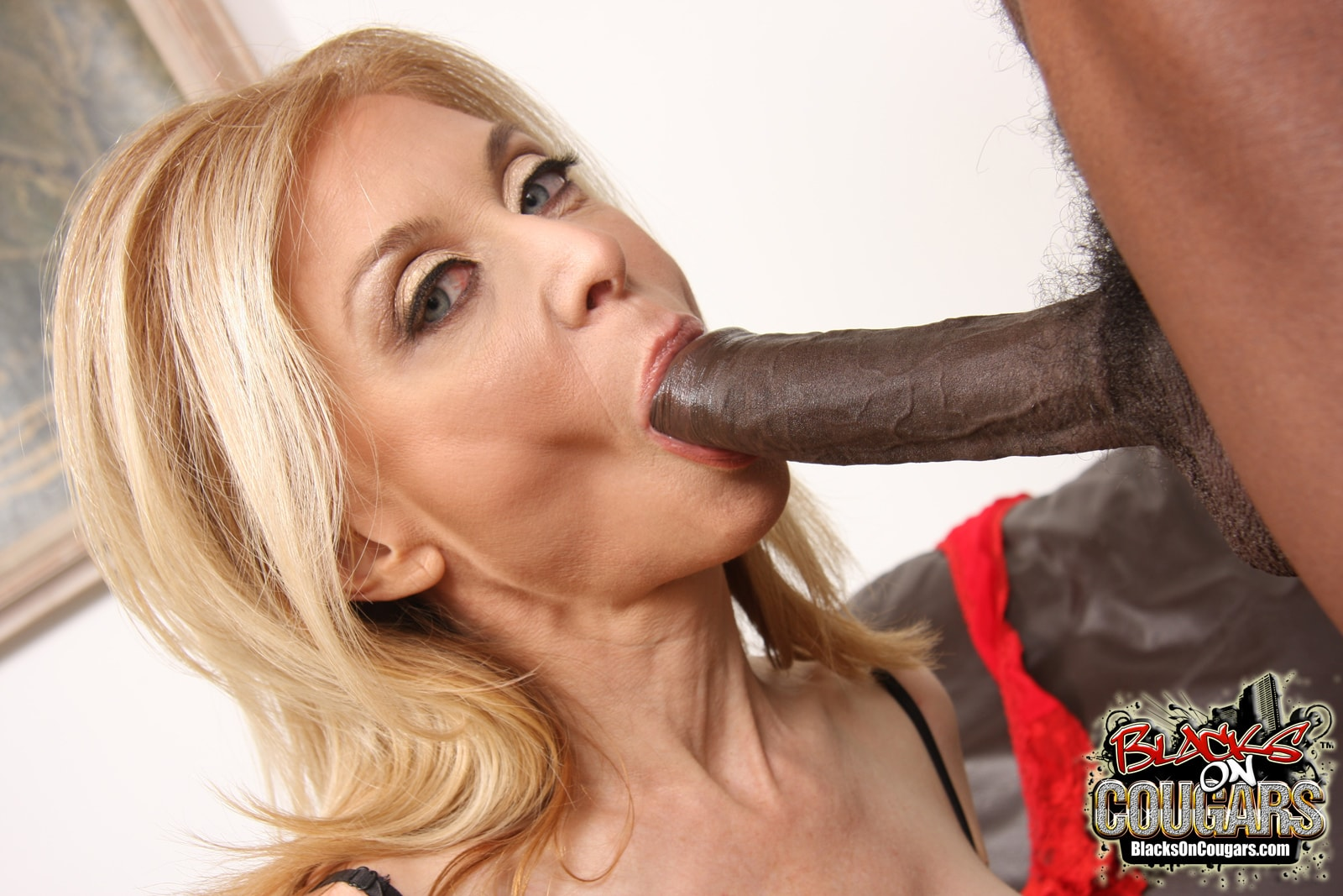 Dogfart '- Blacks On Cougars' starring Nina Hartley (Photo 16)