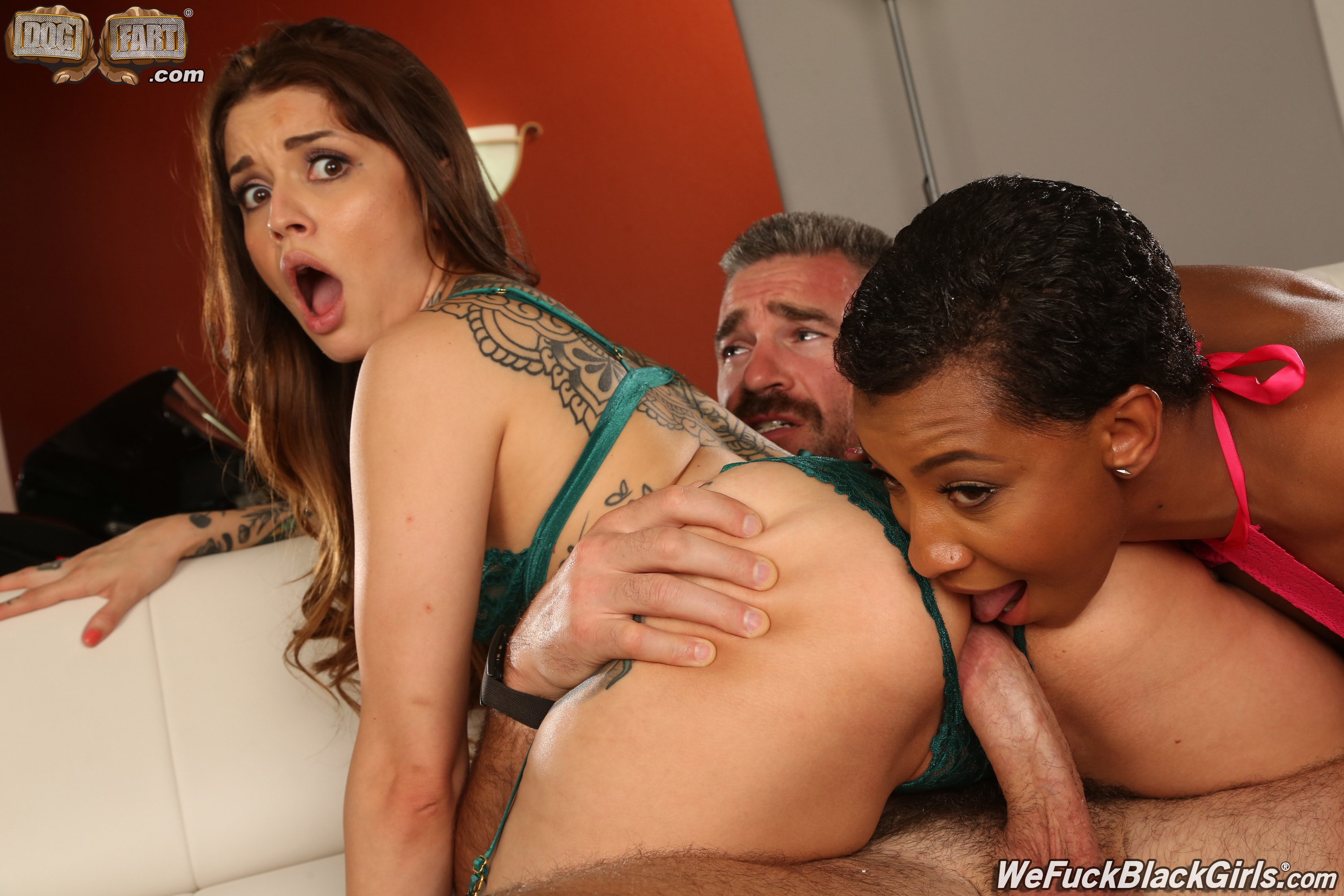 Dogfart 'and Vanessa Vega - We Fuck Black Girls' starring September Reign (Photo 17)