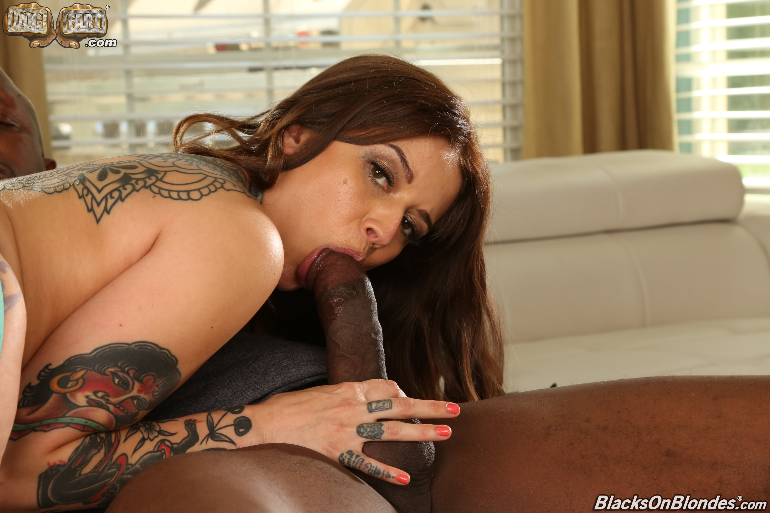 Dogfart '- Blacks On Blondes - Scene 2' starring Vanessa Vega (Photo 10)