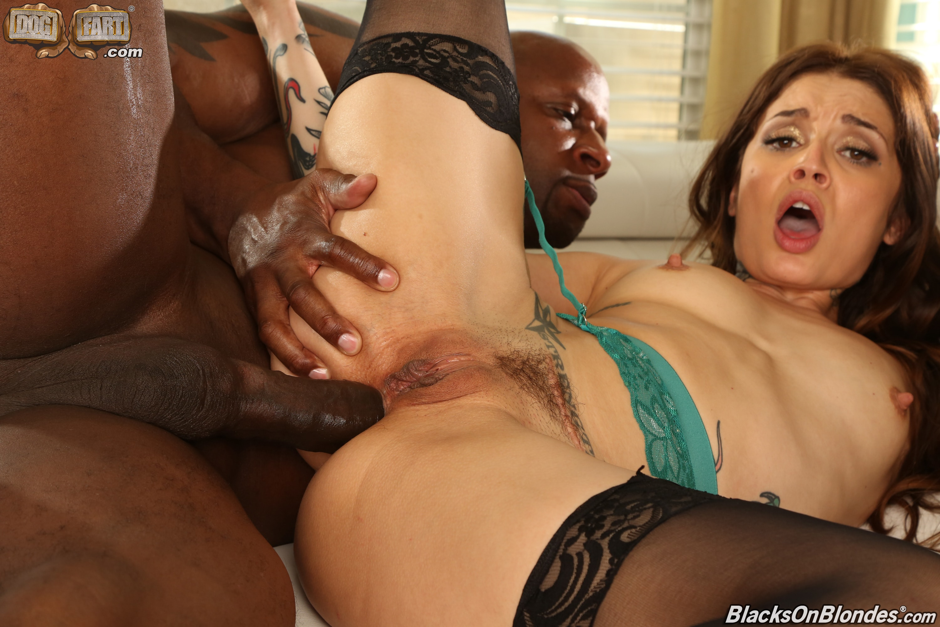 Dogfart '- Blacks On Blondes - Scene 2' starring Vanessa Vega (Photo 27)
