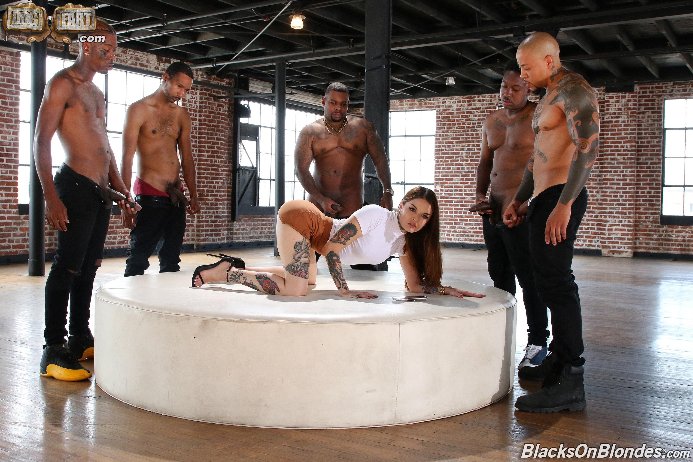 Dogfart '- Blacks On Blondes - Scene 3' starring Vanessa Vega (Photo 4)