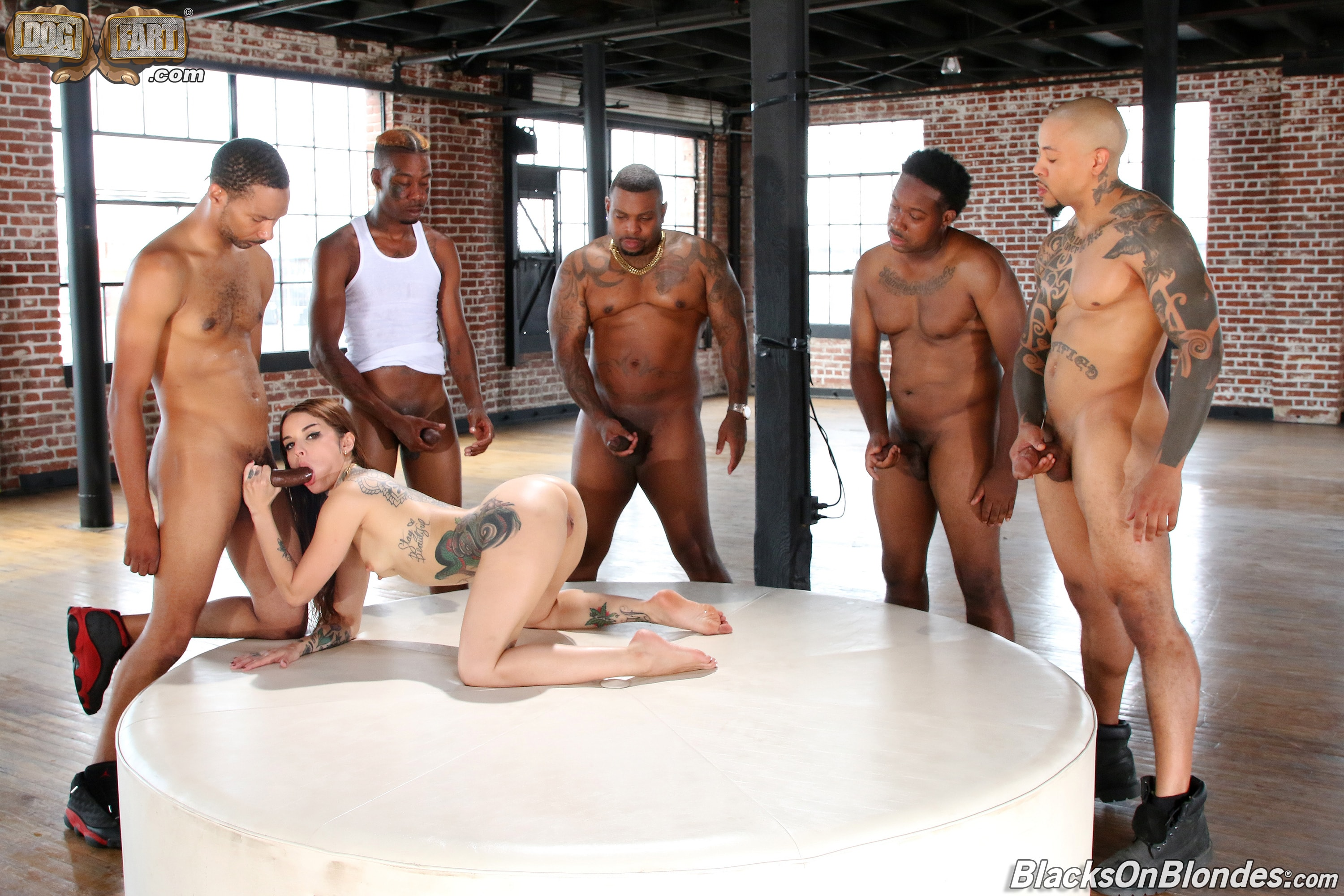 Dogfart '- Blacks On Blondes - Scene 3' starring Vanessa Vega (Photo 5)