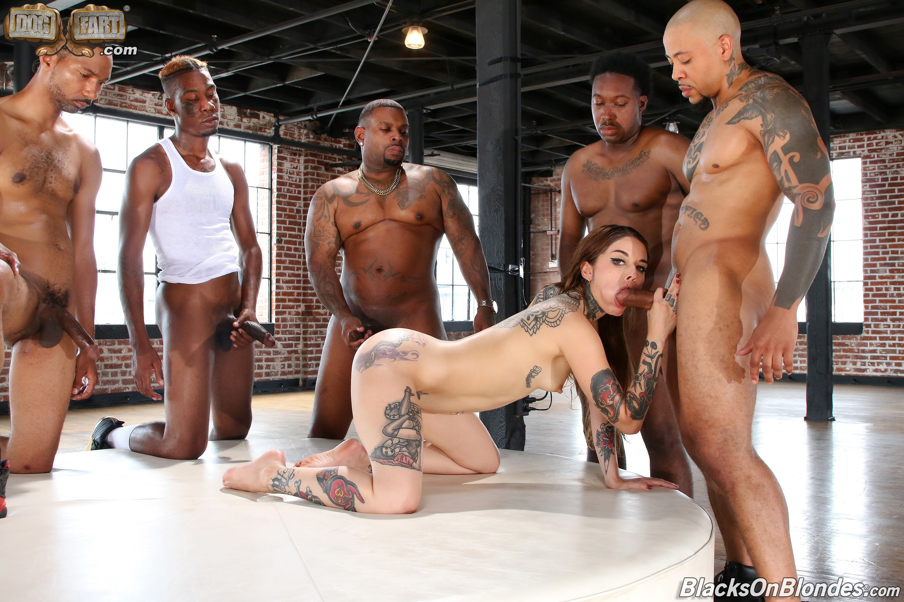 Dogfart '- Blacks On Blondes - Scene 3' starring Vanessa Vega (Photo 7)