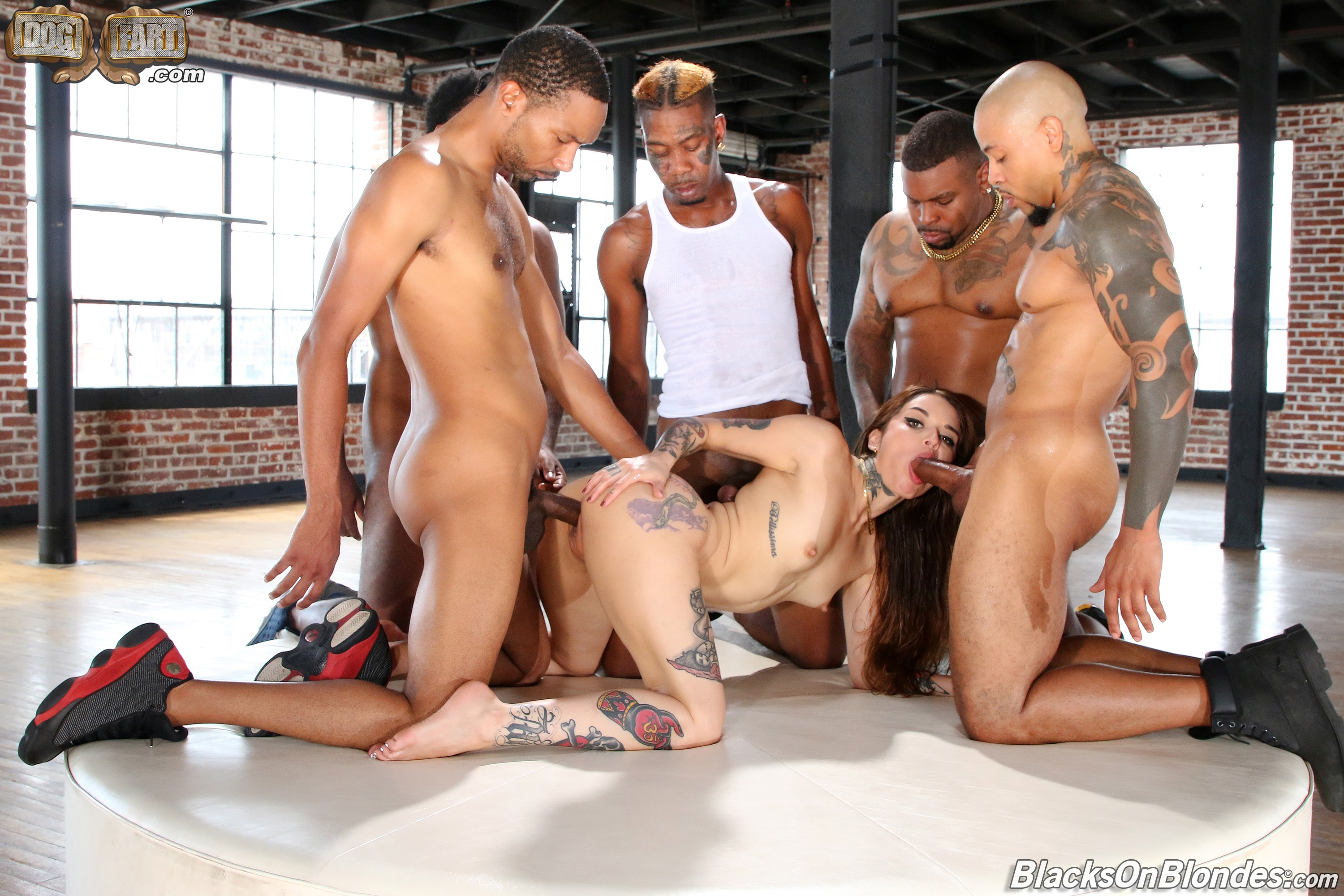 Dogfart '- Blacks On Blondes - Scene 3' starring Vanessa Vega (Photo 11)