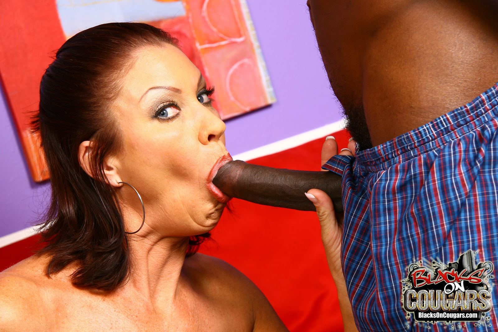 Dogfart '- Blacks On Cougars' starring Vanessa Videl (Photo 11)
