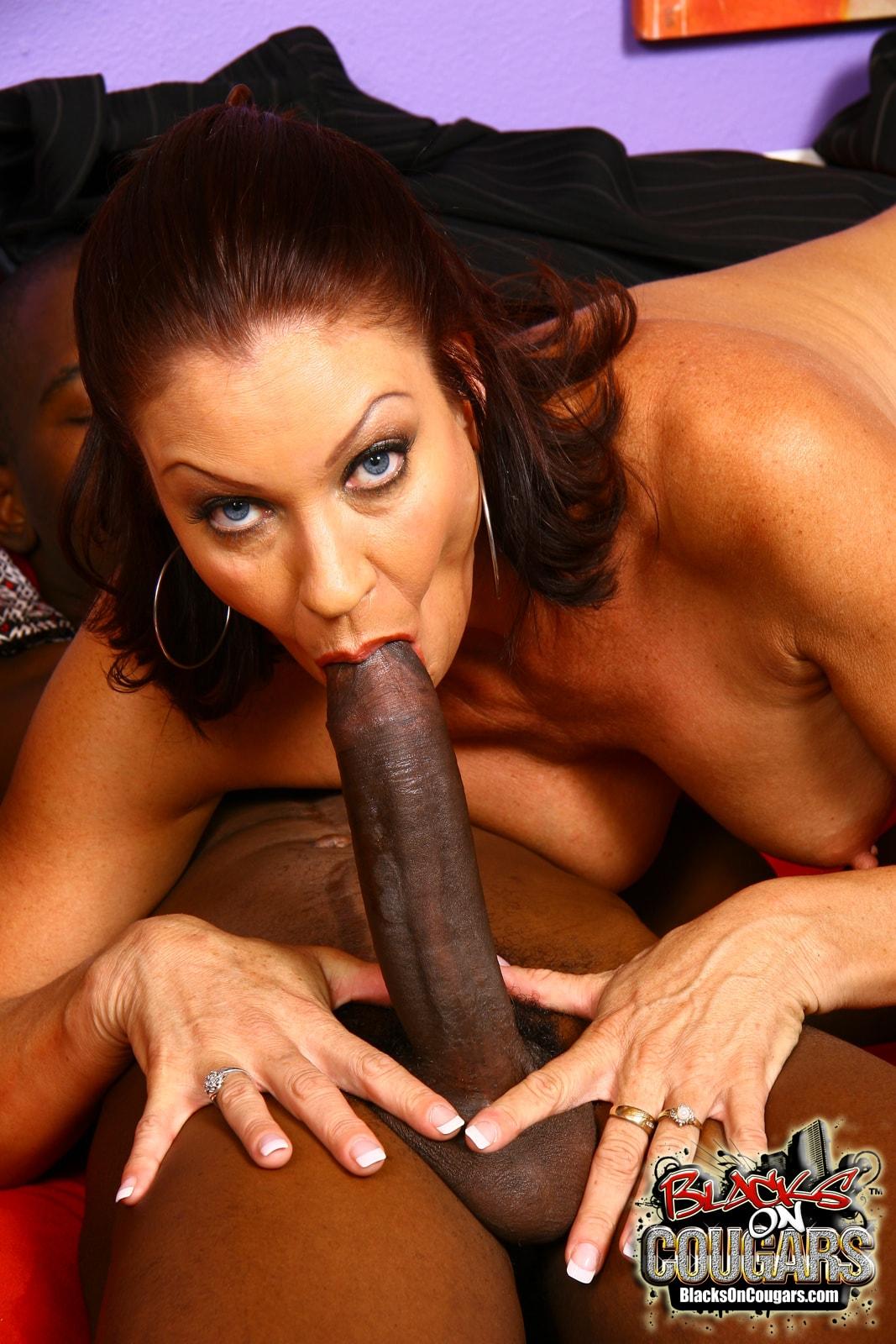Dogfart '- Blacks On Cougars' starring Vanessa Videl (Photo 14)